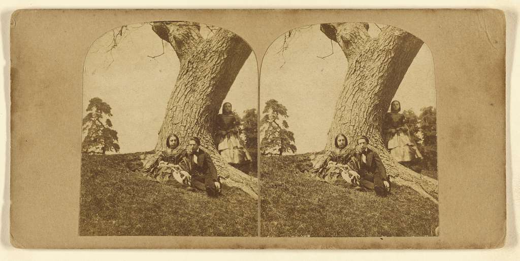[Couple seated under a tree, another woman hiding behind them]