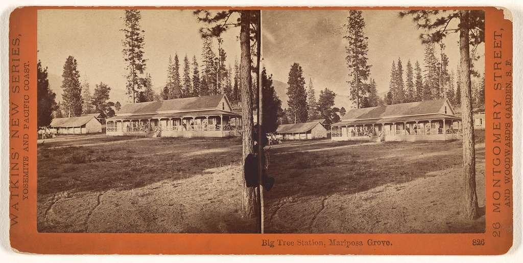 Big Tree Station, Mariposa Grove.