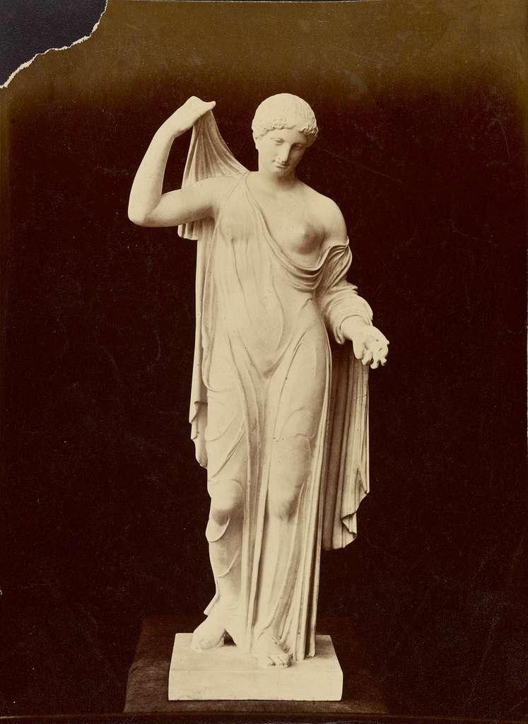 [Aphrodite of Fréjus]