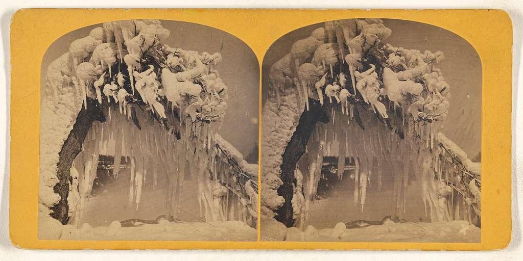 Ice Tree, Luna Island, Niagara in Winter.