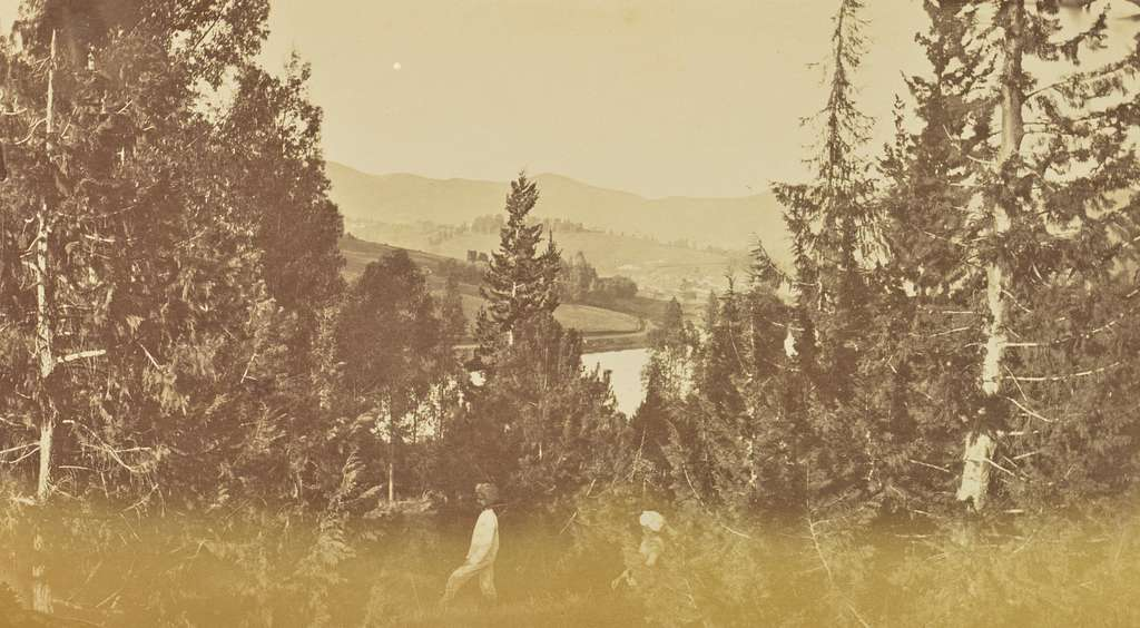 [Landscape View from a Hill]