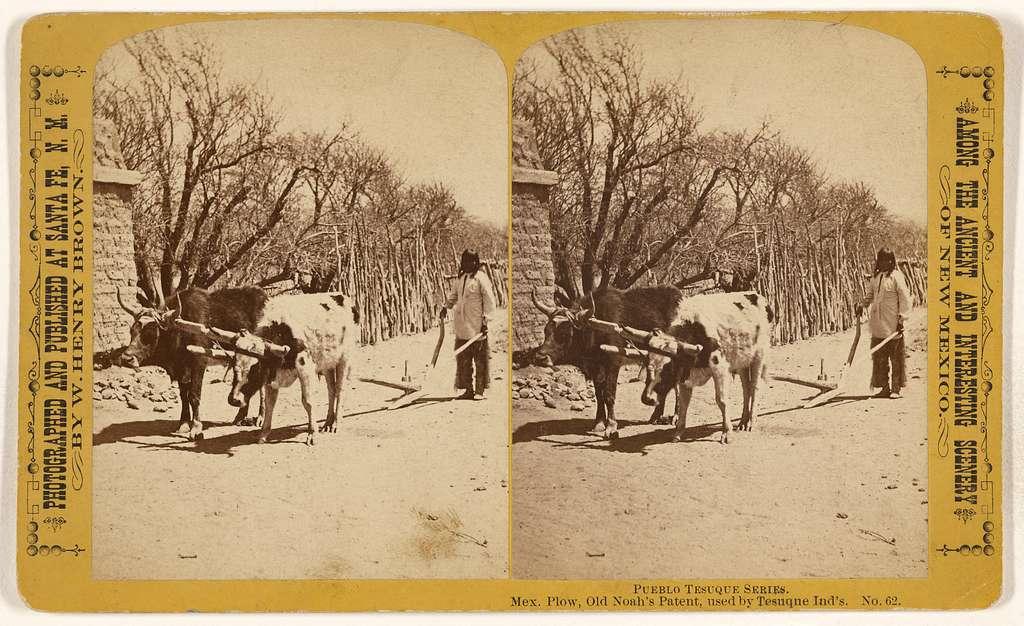 Pueblo Tesuque Series. Mex. Plow, Old Noah's Patent, used by Tesuque Ind's.
