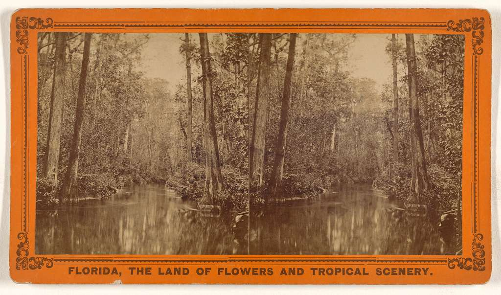 The Great Cypress Pass, Or Gates of The Ocklawaha River.