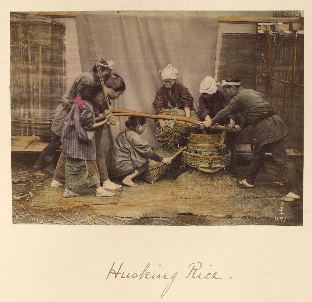 Husking Rice