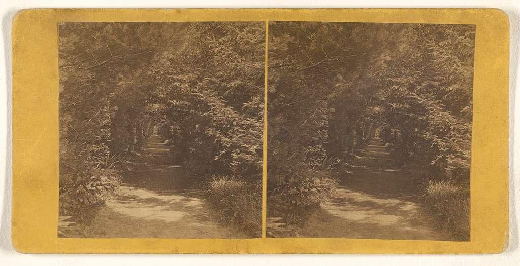 [Evergreen Avenue Cemetery, Newburyport, Massachusetts]