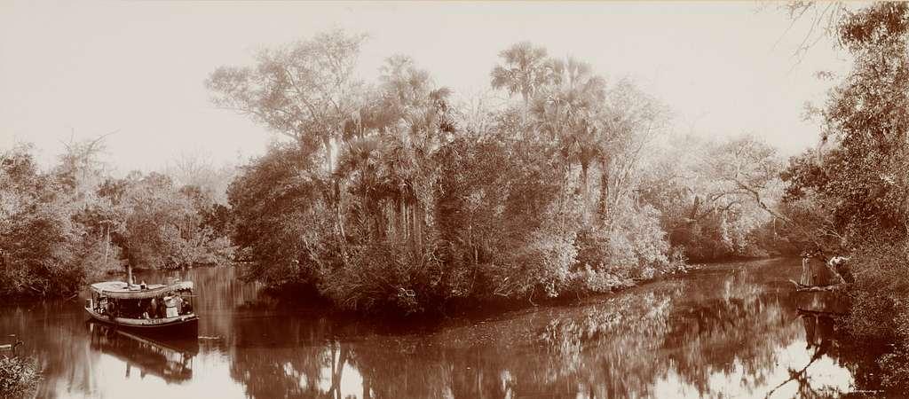 On the Tomoka near Ormond, Florida